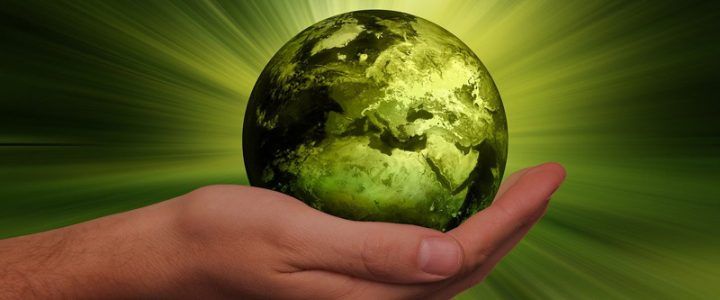 Confira listão de 33 práticas sustentáveis para o dia a dia